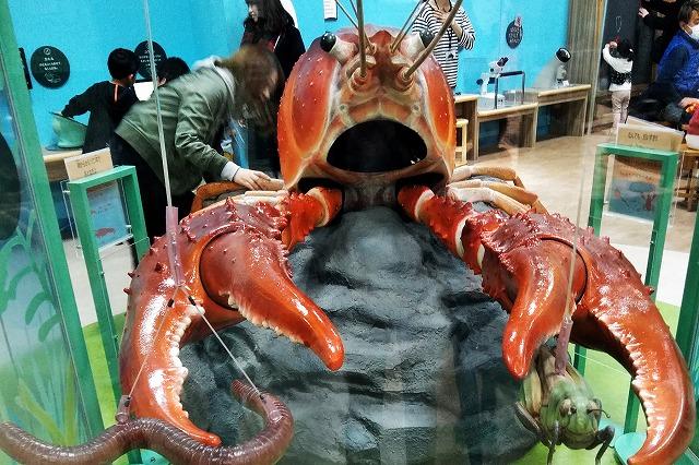 琵琶湖博物館へ行ってきた! ますますパワーアップした体験学習施設!