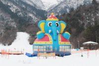 マキノ高原へ行ってきた! 雪遊びの世界へ片道220円バスで!